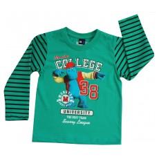 bluza chłopięca - GT-3251