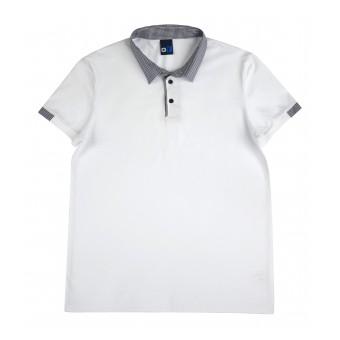 koszulka męska polo - GT-6642