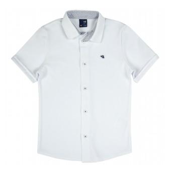 mięciutka koszula z dzianiny typu Lacosta - GT-8645